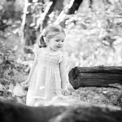 Little girl looks at log in a woodland photo