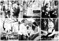 Collage of professional family portraits outdoors in natural light