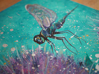 Dragonfly in the thistles - close up